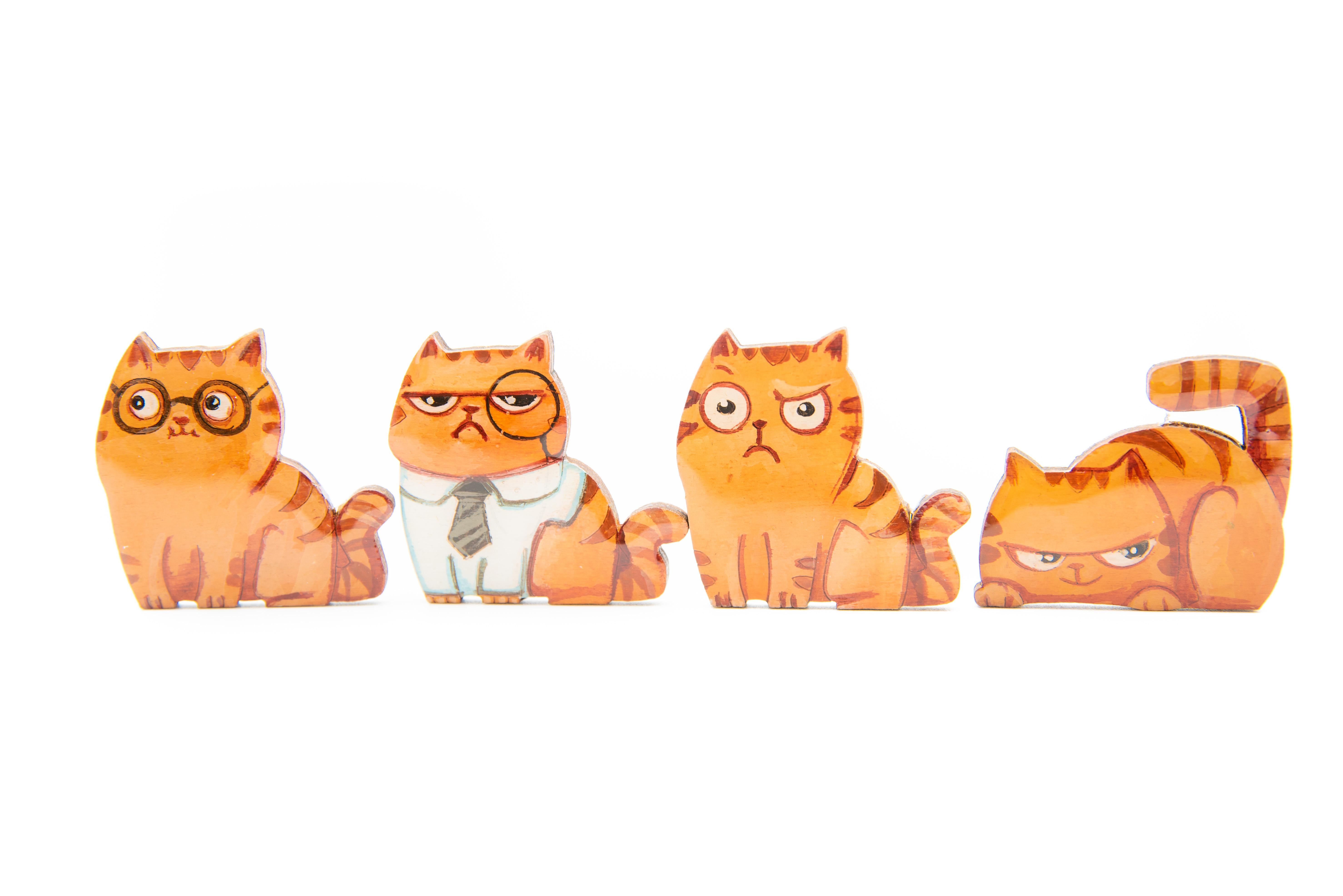 Brosa ALFIE - the CAT